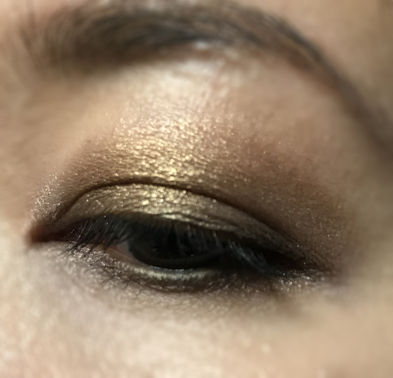 Chantecaille 20th Anniversary Eye Palette makeup look
